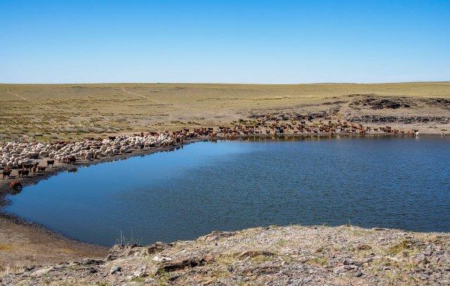 Lake - Road to Kharkhorin
