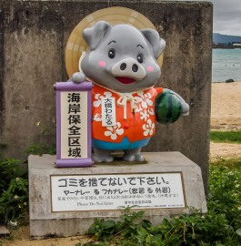 Plastic Do Not Litter Pig