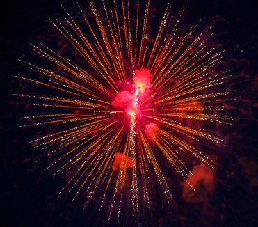 Fire Flowers 2016