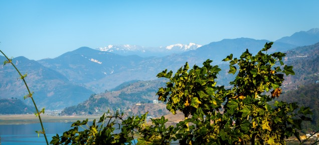 Pokhara 2017