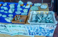 Oyashirazu Pier - Jade Hunting Expedition - 2017